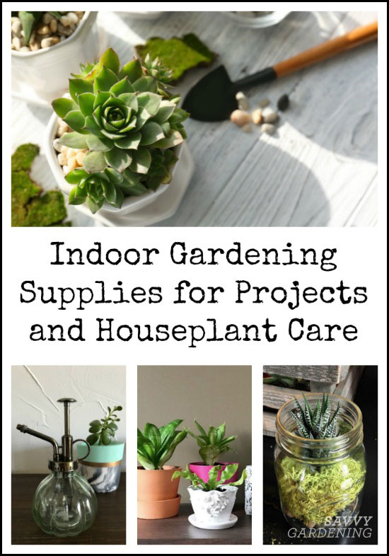 Indoor gardening supplies for projects and houseplant care