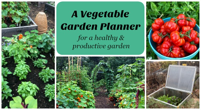 A Vegetable Garden Planner For High Yields Healthy Plants