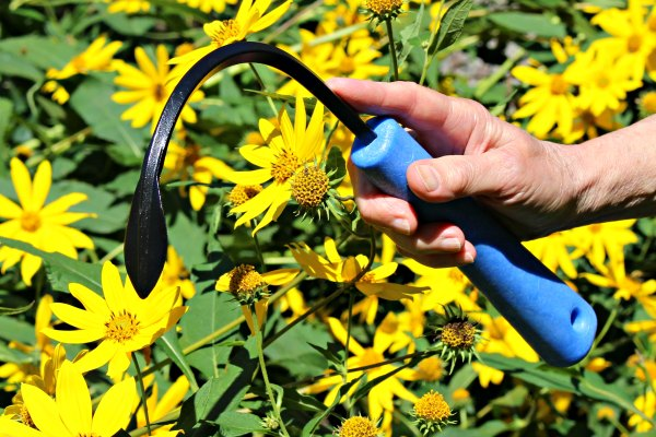 Discover the best tools for weeding