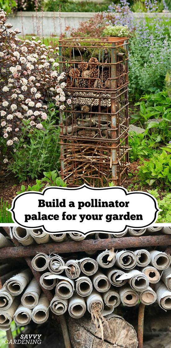 Learn how to build a pollinator palace for your garden