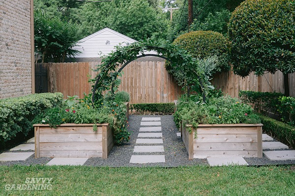 Learn how to set up, plant, and grow a small backyard vegetable garden.