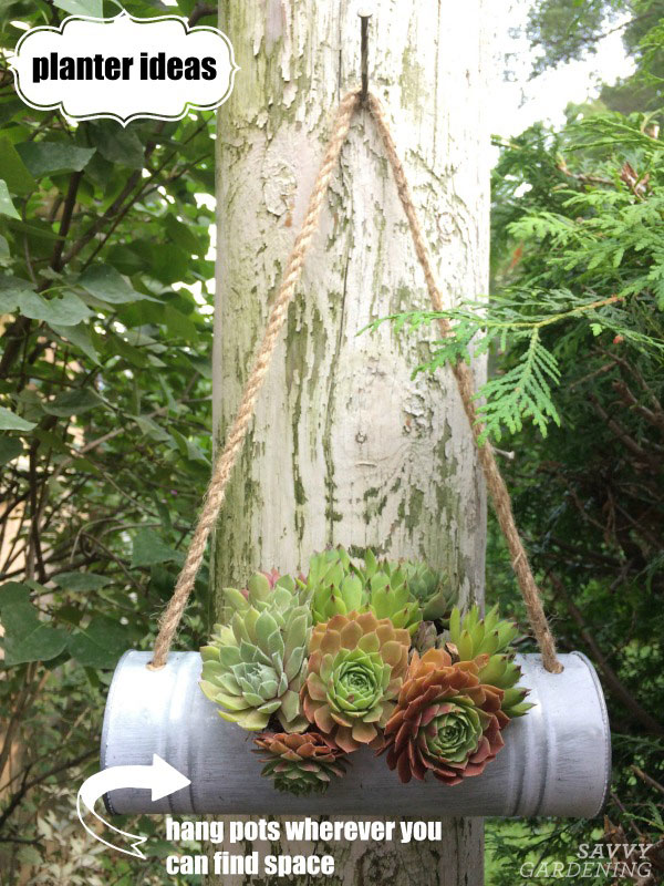 This hanging planter filled with hens and chicks is one of many planter ideas.