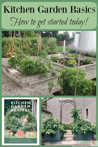 Design and plant a kitchen garden for homegrown vegetables and herbs.