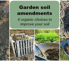Garden soil amendments to improve your soil