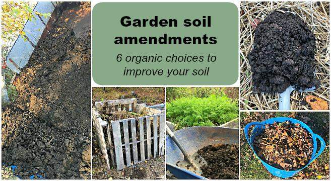 Garden soil amendments to improve your soil