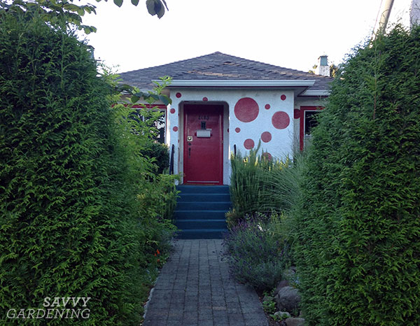 A house with red polka dots to attract hummmingbirds