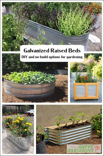 Galvanized raised bed ideas and tips