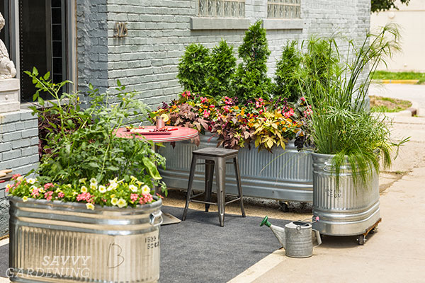 urban stock tank gardens