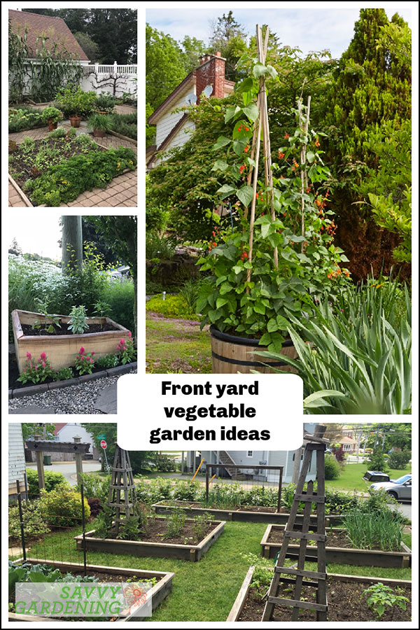 ideas for your front yard vegetable garden