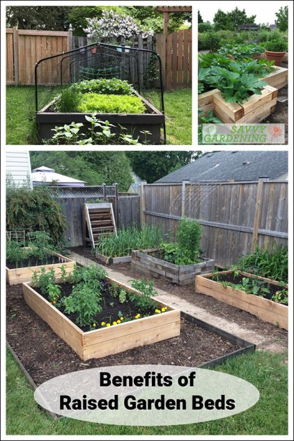 benefits of raised garden beds - Grow a healthy vegetable garden anywhere