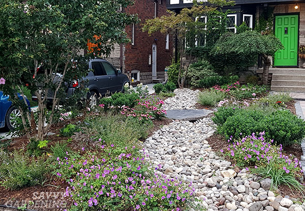 dry bed in a front yard