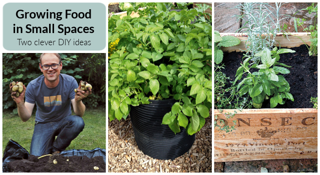 small space garden project ideas