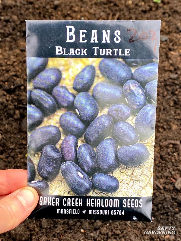 black turtle bean seed packet