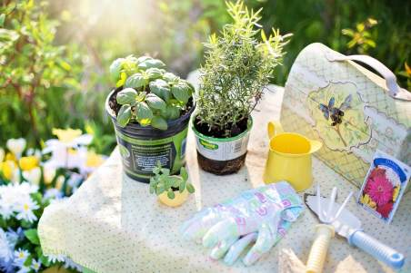 Summer is just around the corner and now is the perfect time to start thinking about giving your garden a makeover - on a budget of course!