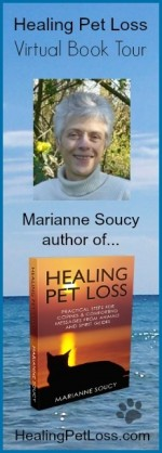 Healing Pet Loss Book Tour Banner 2014