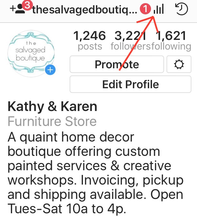 The Salvaged Boutique Instagram Insights Icon