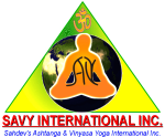 SAVY International Inc