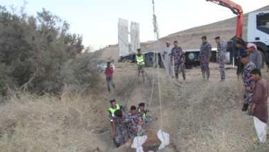 Photo of الدفاع المدني ينقذ جملاً سقط داخل حفرة في الحسا  / صور