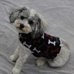 Brody-in-sweater