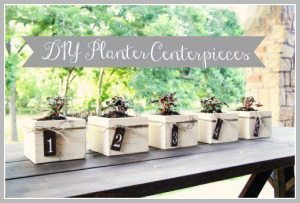Planter Box Centerpieces