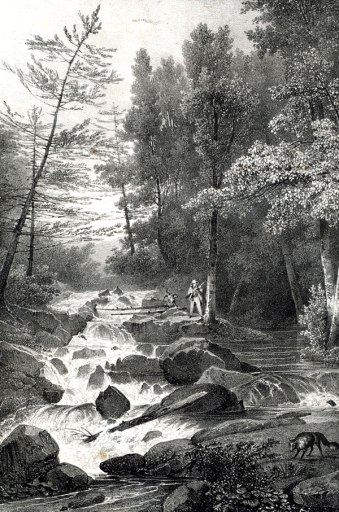 The Lower Falls by Jacques-Gerard Milbert (1825).