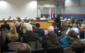 Moni Speaking at City Budget Cmte Jan 2011