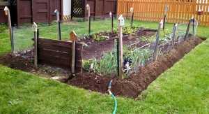 garden 5.10.15