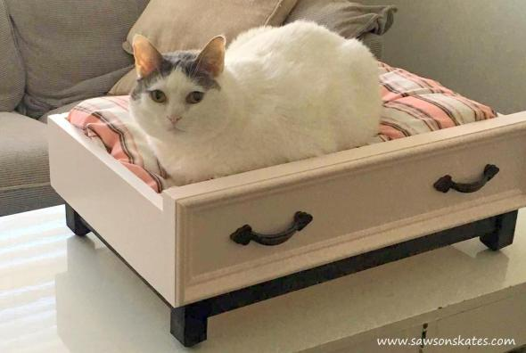 Diy dog bed with an upcycled drawer look for How to make a cat bed easy