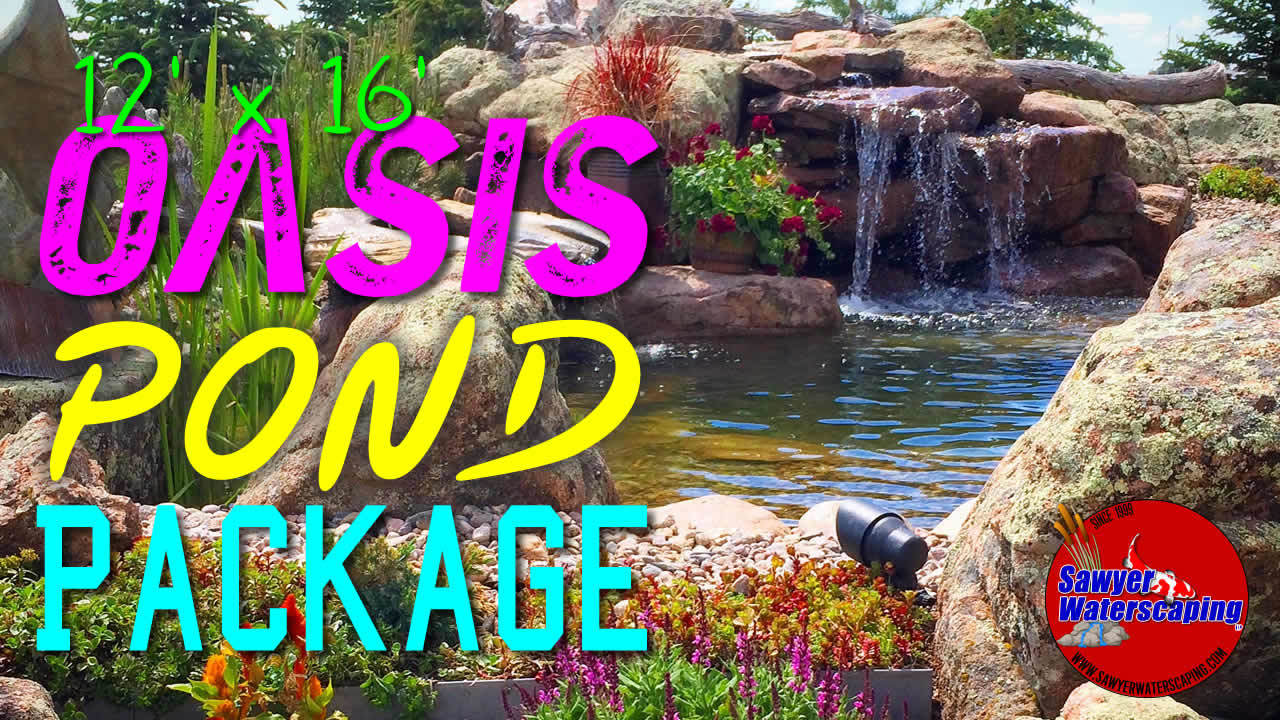 Oasis Pond Package Header Image