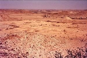 Semi-desert