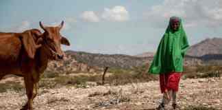 Somaliland: Climate Change Already A Cruel Reality