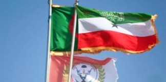 When Is A State A State The Case For Recognition Of Somaliland