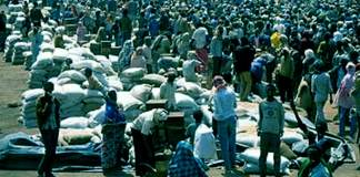 Over 300,000 Somalis, Fleeing Civil War, Cross Into Ethiopia