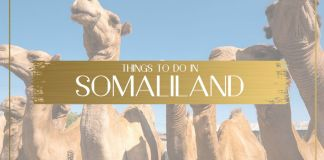 Travel Guide And Things To Do In Somaliland