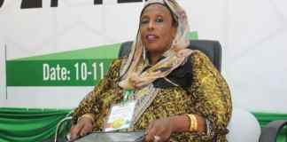 Somaliland Govt Challenged To Source Internal Ways Of Generating Income