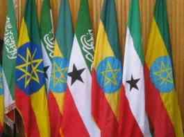 Ethiopia-Somaliland Ties Will Always Endure