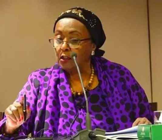 Video: Edna Adan Briefs International Media On Somaliland President's Visit To Guinea