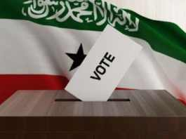 Initiative And Referendum Institute Provides Election Observers for Somaliland Referendum
