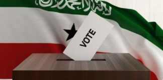 Initiative And Referendum Institute Provides Election Observers for Somaliland Referendum
