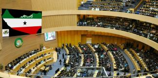 African Youth Parliament Admits Somaliland As Its 55th Member