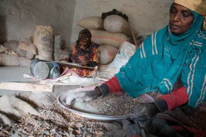 Somaliland Is The World's Biggest Producer Of Frankincense
