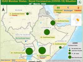 Djibouti Coronavirus (COVID-19)Confirmed Cases Reach 18