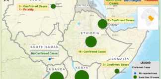 Djibouti Coronavirus (COVID-19)Confirmed Cases Reach 18