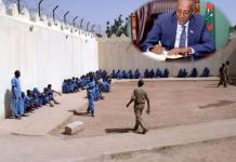 Coronavirus Somaliland Releases 574 Prisoners