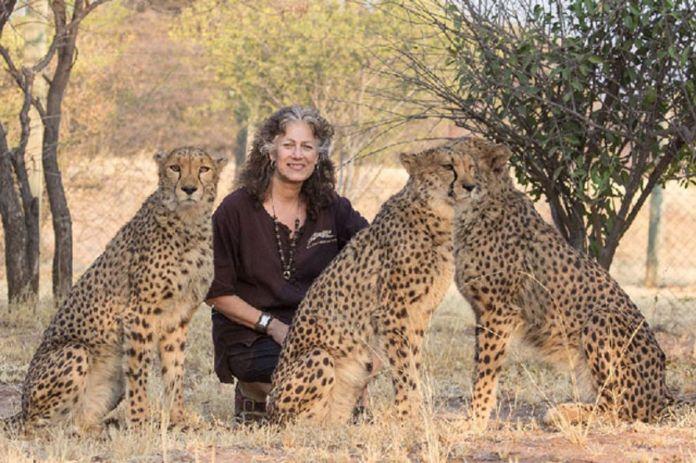 Cheetah Conservation Fund Supports Somaliland