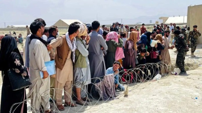 Somaliland To Temporarily Host Afghan Refugees