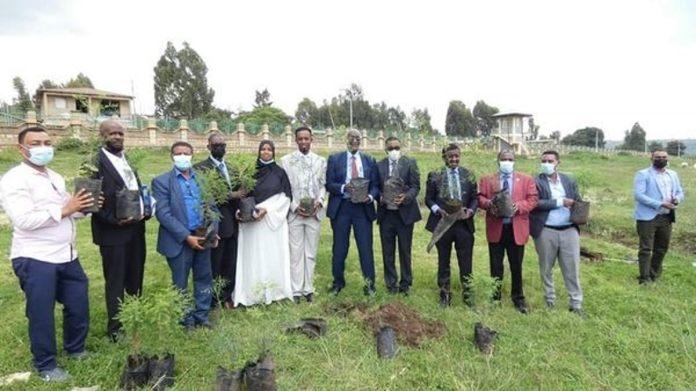 Haramaya University To Launch Postgraduate Programs In Somaliland