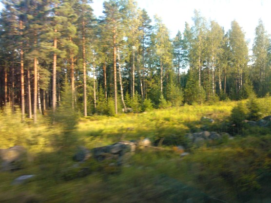 this area used to be a war site in Finland. we're closing in now...