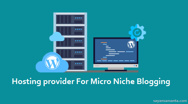 Hosting provider For Micro Niche Blogging