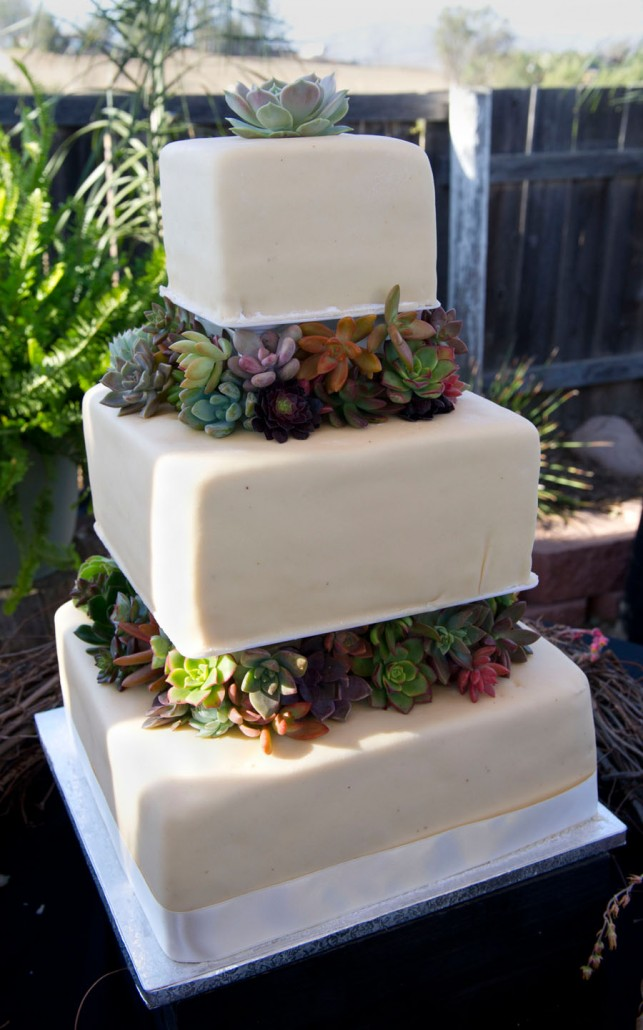 Wedding photos with succulents   Say I Do Succulents succulent cake toppers